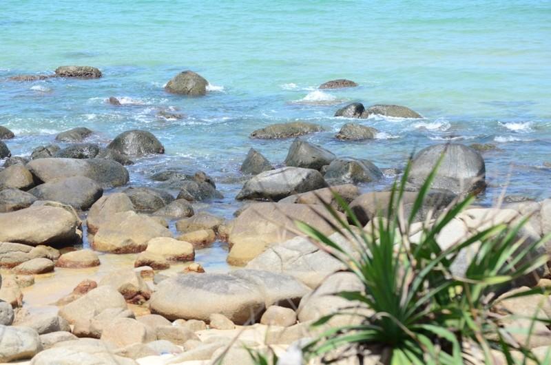 Khám phá nét hoang sơ biển Vũng Bầu - ảnh 6