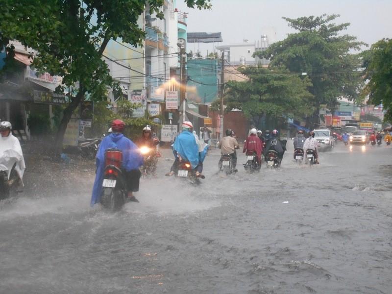 Người Sài Gòn nhẹ nhõm đón cơn mưa quý hơn vàng - ảnh 3
