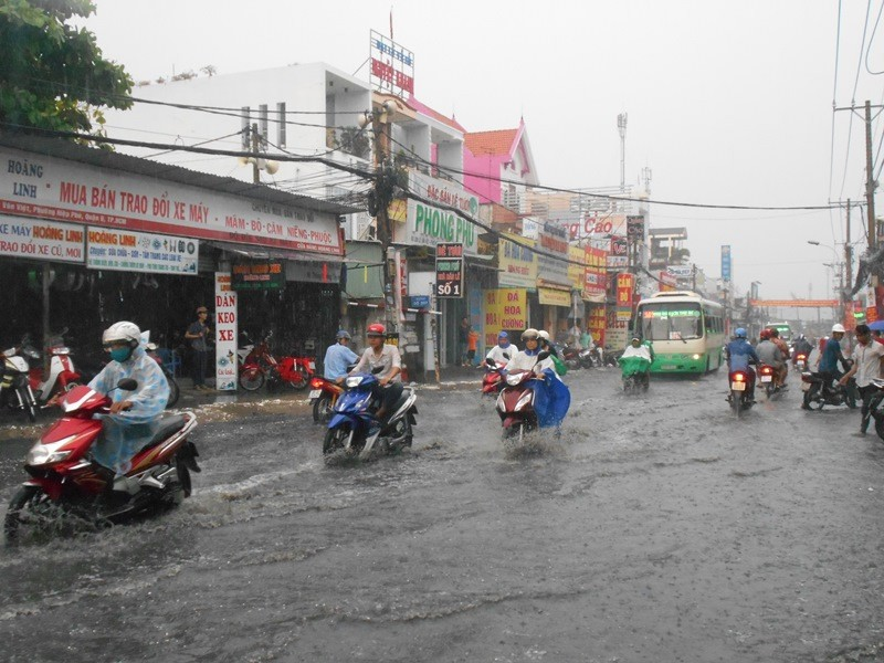 Người Sài Gòn nhẹ nhõm đón cơn mưa quý hơn vàng - ảnh 4