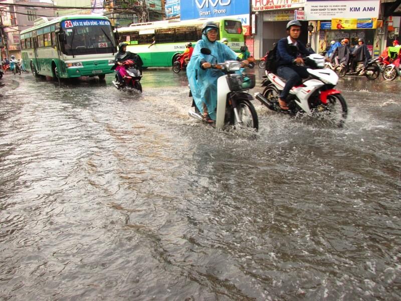 Người Sài Gòn nhẹ nhõm đón cơn mưa quý hơn vàng - ảnh 12