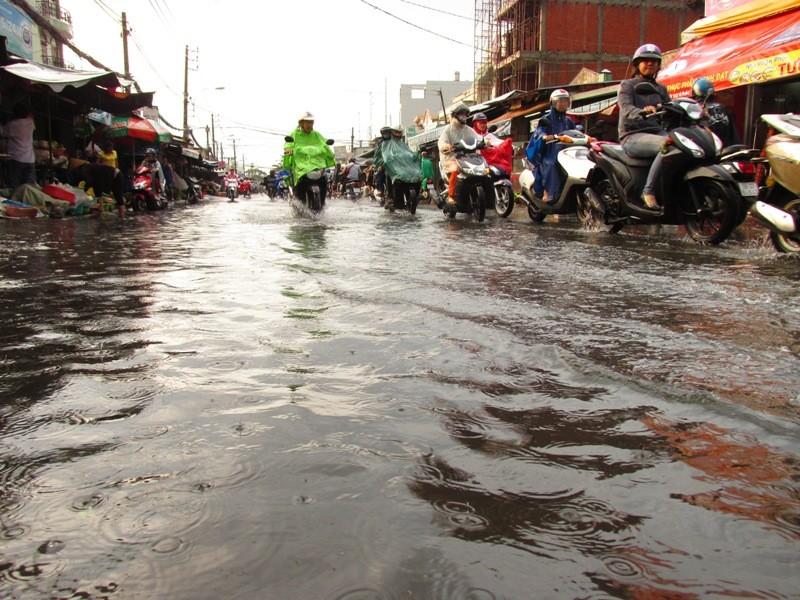 Người Sài Gòn nhẹ nhõm đón cơn mưa quý hơn vàng - ảnh 16