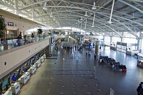 Hai nhân viên hàng không Việt Nam bị bắt ở sân bay Hàn Quốc - ảnh 1