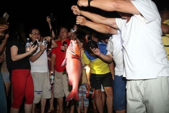Chú cá hồng, chiến lợi phẩm đầu tiên