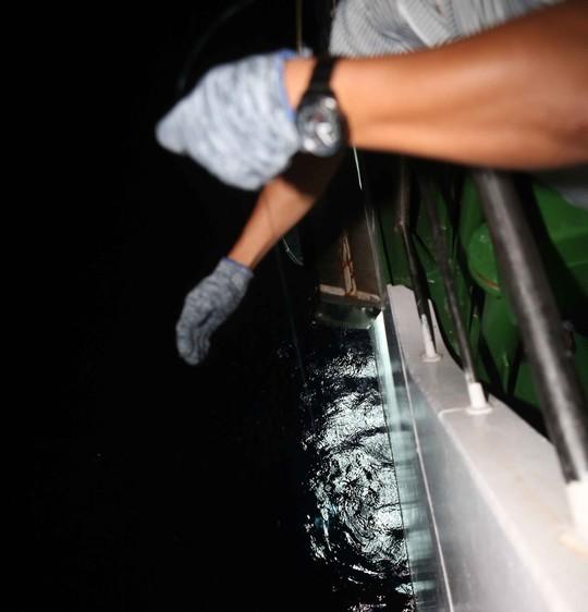 Thả câu dọc mạn tàu