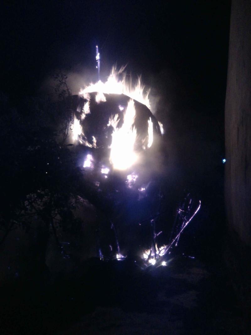 Phá hoại đốt trộm cây rơm, gây họa cả người và vật - ảnh 1