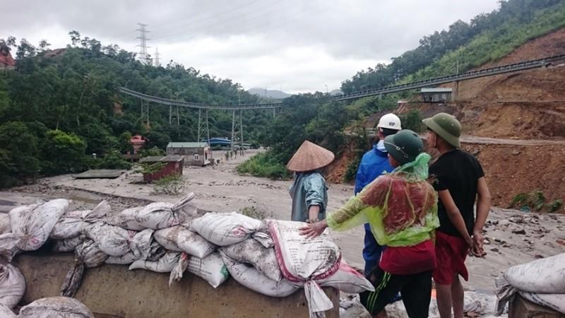 Người dân Quảng Ninh bất chấp nguy hiểm cố vớt than trôi - ảnh 3