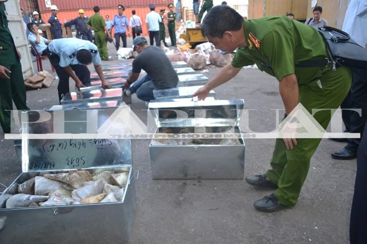 Hơn 735 kg ngà voi và sừng tê giác 'sa lưới' ở cảng miền Trung - ảnh 1