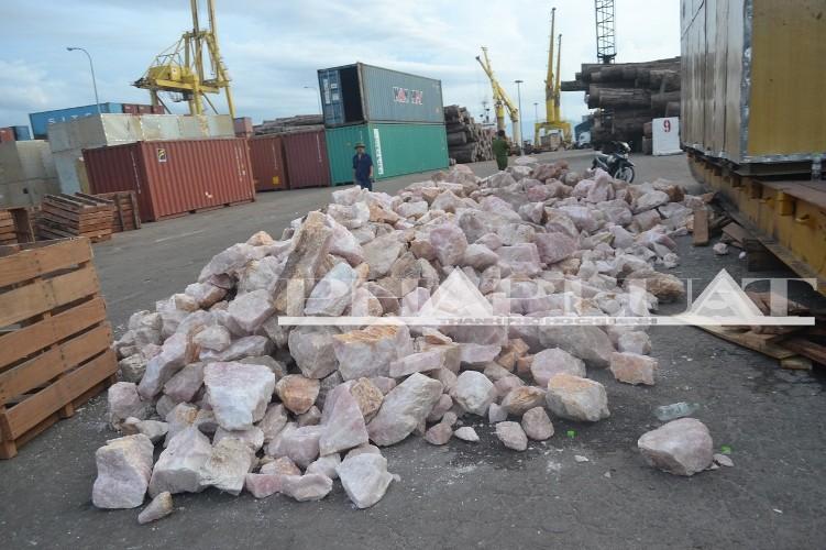 Hơn 735 kg ngà voi và sừng tê giác 'sa lưới' ở cảng miền Trung - ảnh 6