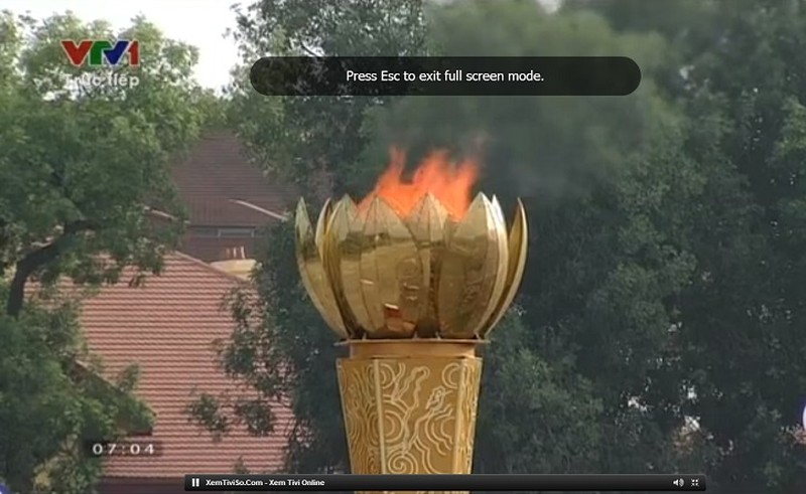 Toàn cảnh lễ mít tinh mừng 70 năm ngày Quốc khánh 2-9 - ảnh 51