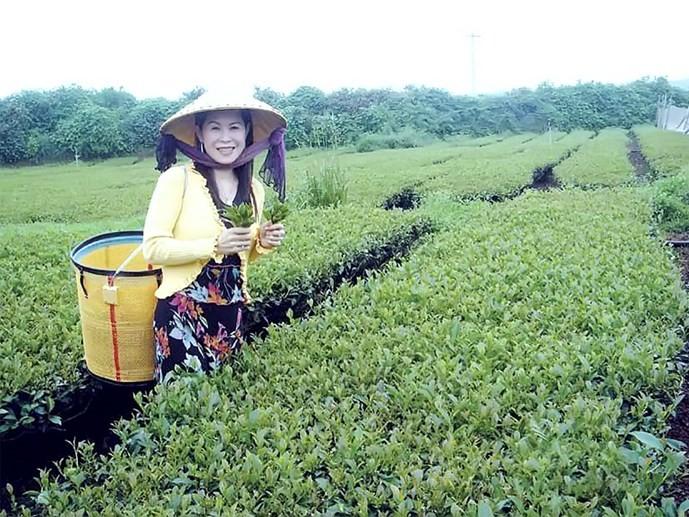 Bộ Công an vào cuộc vụ doanh nhân Hà Linh chết bất thường - ảnh 1