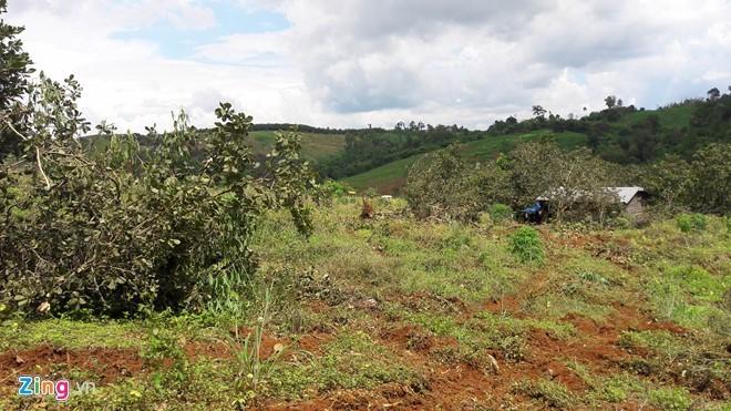 Toàn cảnh vụ công ty cưỡng chế đất, 3 người bị bắn chết - ảnh 1