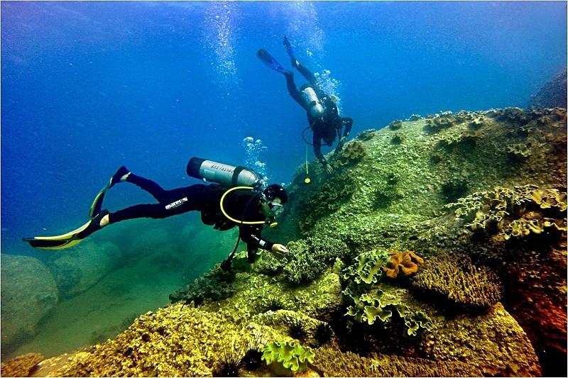 1,5 triệu m3 chất thải đổ sát khu bảo tồn biển? - ảnh 1