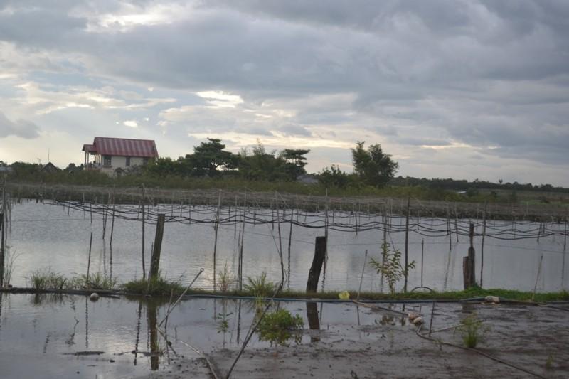 Lâm Đồng: Nhà dân bị ngập trong nước hàng tháng trời - ảnh 3
