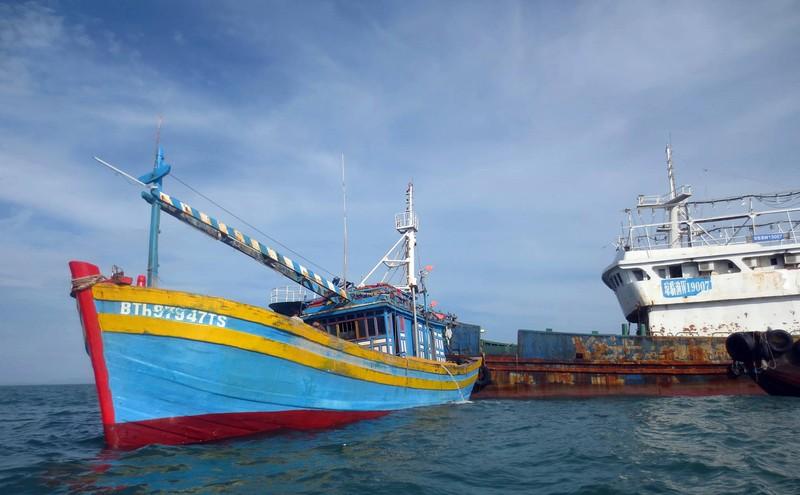 Xác lập sở hữu 'con tàu ma' Quỳnh Lâm Ngư - ảnh 4