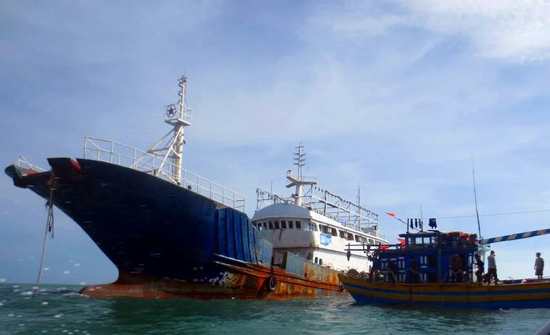 Xác lập sở hữu 'con tàu ma' Quỳnh Lâm Ngư - ảnh 3