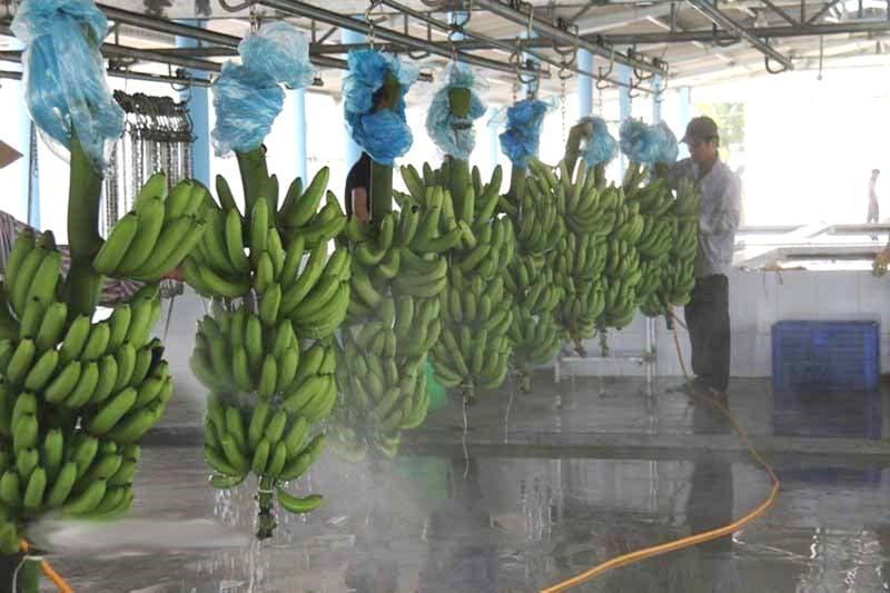 Chủ tịch tỉnh Long An:'Không đổi môi trường lấy đầu tư' - ảnh 1