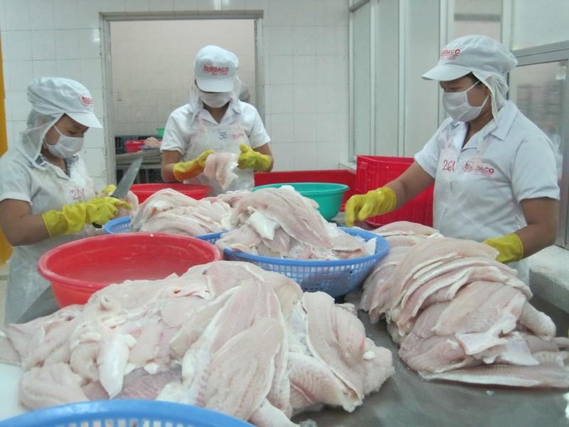 Tập đoàn Carrefour ngừng mua cá tra Việt  Nam - ảnh 1