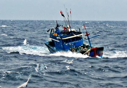7 ngư dân Bình Định bị nạn, mất liên lạc trên biển - ảnh 1