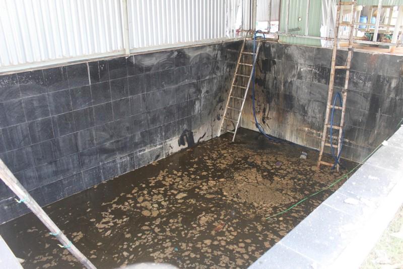 5 người chết trong hầm nước cá có thể bị ngạt khí độc - ảnh 1