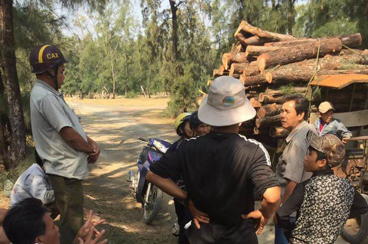 Phó Thủ tướng yêu cầu báo cáo vụ HTX phá rừng  - ảnh 1