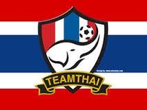 Các đội tuyển Việt Nam sẽ có logo trên ngực áo - ảnh 2