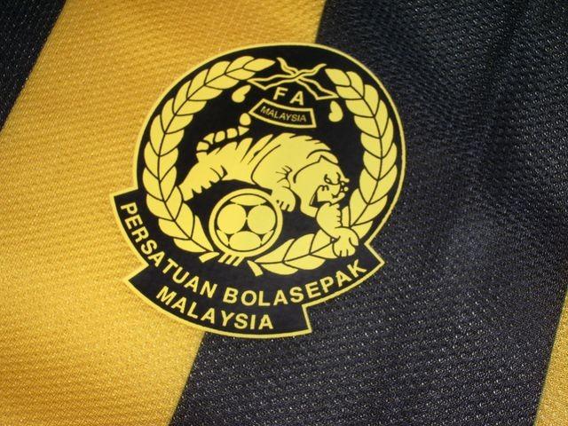 Các đội tuyển Việt Nam sẽ có logo trên ngực áo - ảnh 4