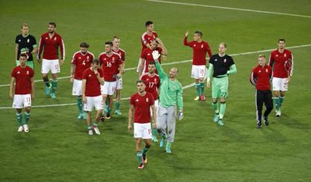 HLV Bernd Storck: 'Hungary có quyền ngẩng cao đầu ra về' - ảnh 1