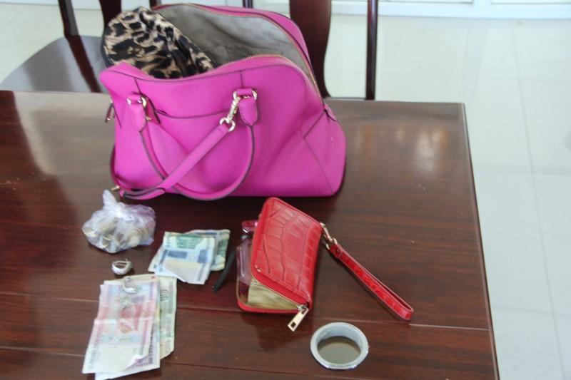 Bắt đối tượng cướp giật tài sản du khách Nga - ảnh 1