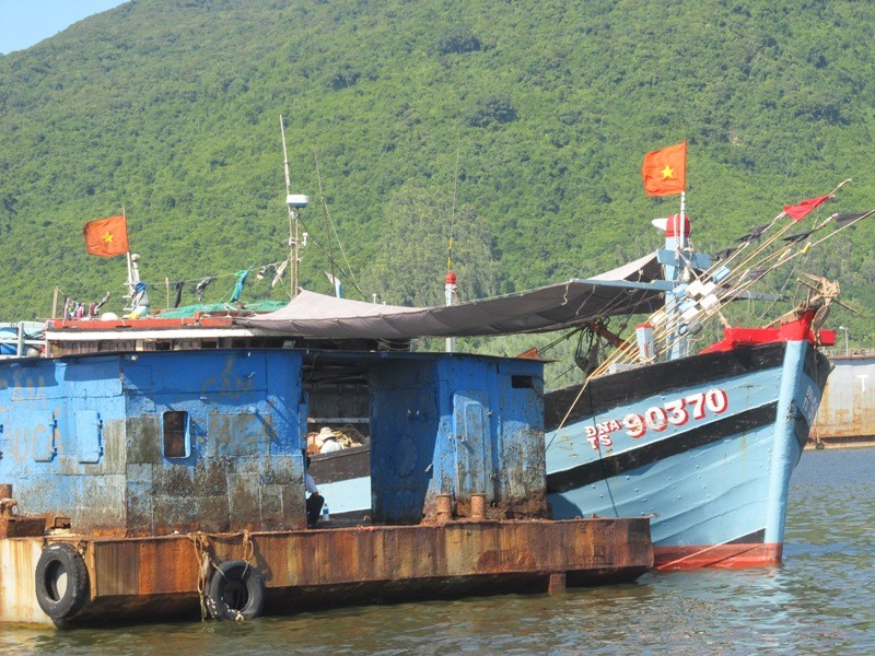 Xác minh thông tin tàu cá Đà Nẵng bị tàu treo cờ Trung Quốc uy hiếp - ảnh 2