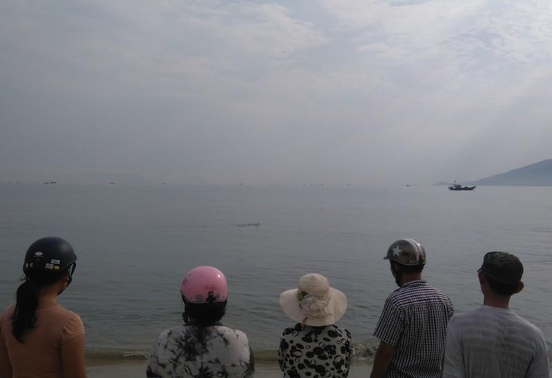 Đang giải cứu cá heo nặng gần 1 tạ bị thương dạt vào bờ biển  - ảnh 1