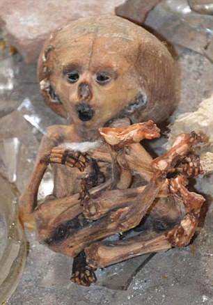 Kinh hoàng căn nhà hoang chứa xác ướp trẻ sơ sinh - ảnh 2