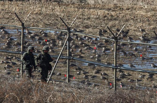 Lính trẻ Triều Tiên đào tẩu sang Hàn Quốc - ảnh 1