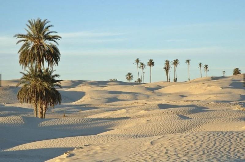 10 nhận định mà ngành du lịch thường xuyên nhầm lẫn - ảnh 10