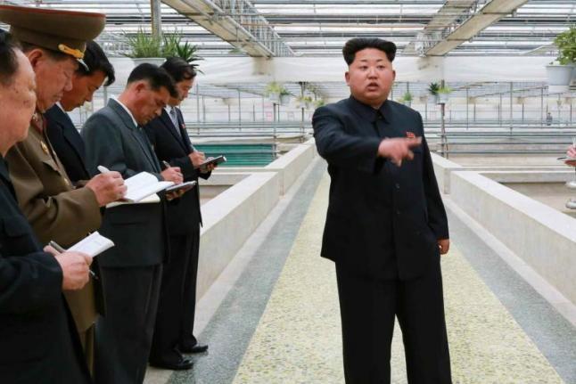 Kim Jong-un xử tử quản lý trại rùa vì 'kém hiệu quả' - ảnh 1