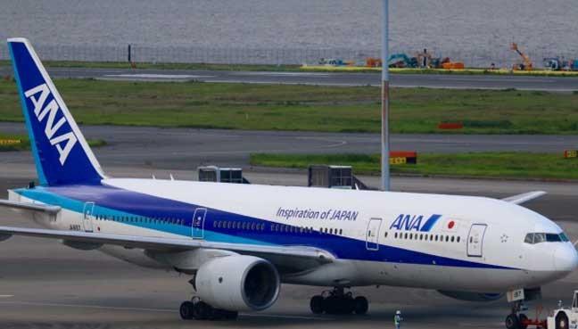 Máy bay Nhật Bản hạ cánh khẩn cấp tại Osaka - ảnh 1