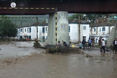 Bão Goni gây lụt, chết 40 người ở Triều Tiên - ảnh 1