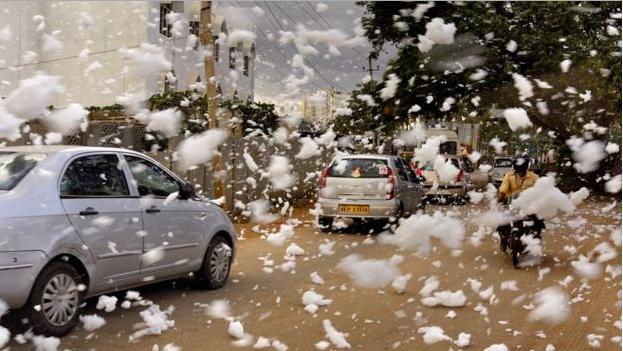 TP Ấn Độ ngập trong bọt trắng vì ô nhiễm - ảnh 3