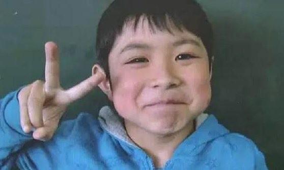 Cậu bé Nhật mất tích 6 ngày trong rừng sống sót kỳ diệu - ảnh 1