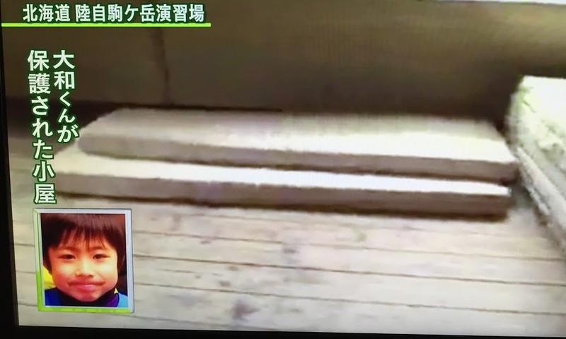 Cậu bé Nhật mất tích 6 ngày trong rừng sống sót kỳ diệu - ảnh 4