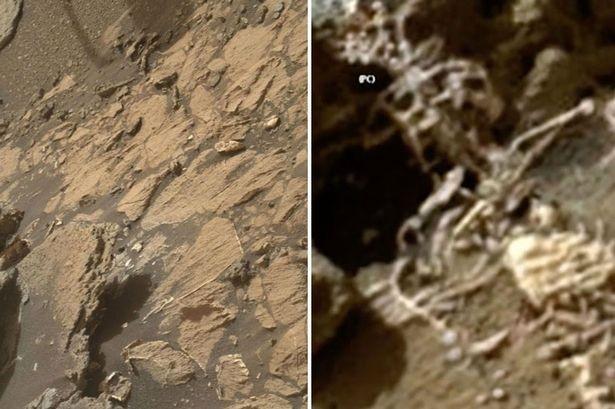 Hình ảnh bên phải được cho là xương người sao Hỏa được ghi lại bởi tàu Curiosity của NASA