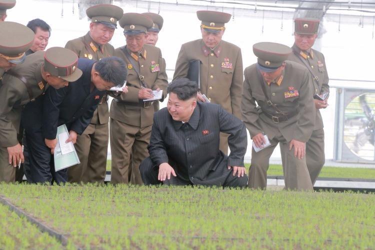Ông Kim Jong-un và các quan chức đến thăm một trang trại. Ảnh: KCNA