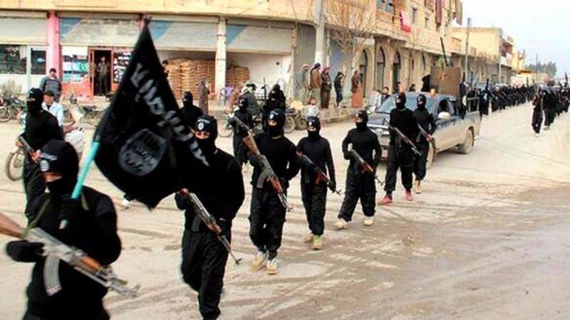 IS khẳng định thủ phạm vụ tấn công đẫm máu ngày 14-7 là chiến binh của tổ chức này.
