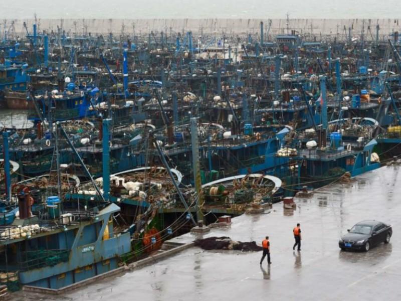 Các tàu cá cập bến tại tỉnh Phúc Kiến để tránh bão. Ảnh: SCMP