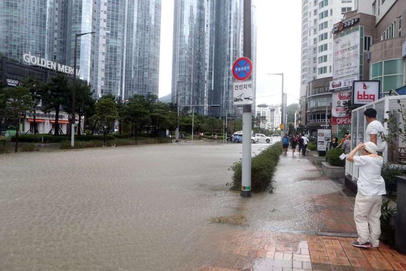 Hình ảnh miền nam Hàn Quốc tan hoang sau siêu bão Chaba