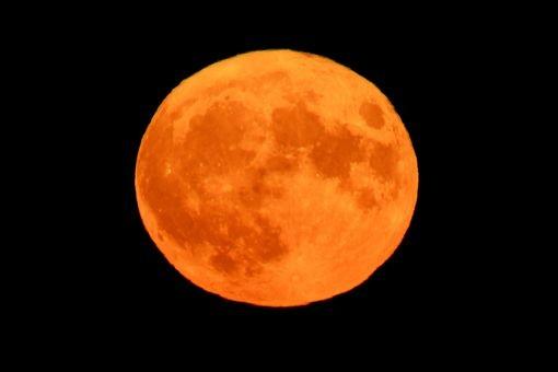 Thế giới ngước nhìn 'siêu trăng' lớn nhất 70 năm qua - ảnh 7