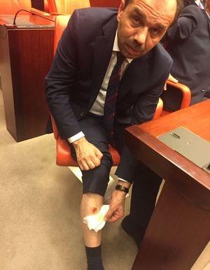 Nghị sĩ Thổ Nhĩ Kỳ ẩu đả nhau tại Quốc hội - ảnh 2