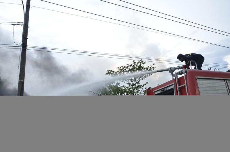 Cháy lớn ở khu cỏ lau huyện Bình Chánh - ảnh 2