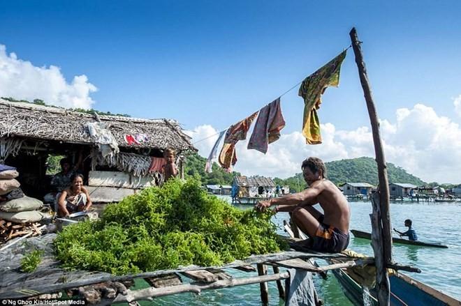 Khám phá cuộc sống như ở xứ sở thần tiên của người Bajau - ảnh 6