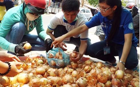 'Giải cứu' hành tây giúp nông dân Đà Lạt - ảnh 2