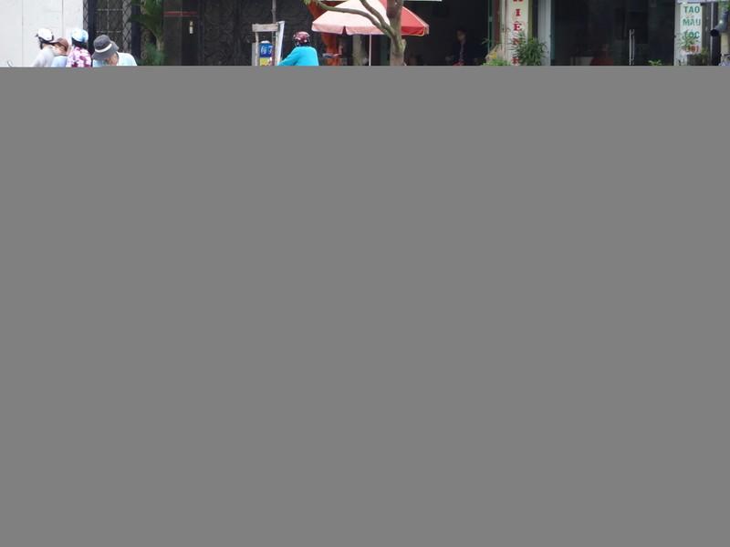 Tìm loại cá thích hợp với kênh Nhiêu Lộc- Thị Nghè - ảnh 3